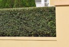 Alkimos Hard landscaping surfaces 8