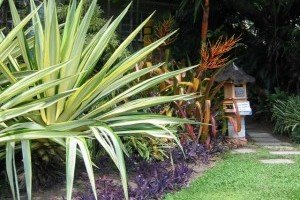 Kwikfynd Tropical Landscaping
